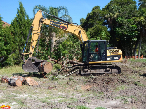 Land Clearing and Site Preparation