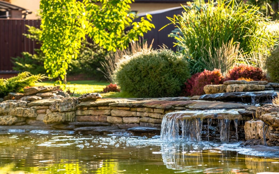 A Homeowner's Guide to Manmade Backyard Ponds